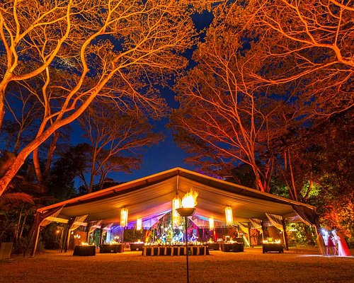 Australia's only off site rainforest dining experience