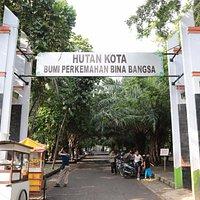 Hutan kota Bekasi, masuk lewat Jl. Ahmad Yani