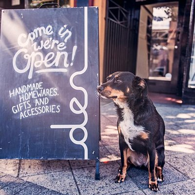 Shop dog, Rubi and Front Signage.
