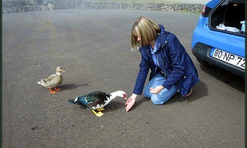 Local inhabitants prove very friendly