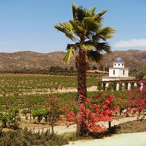 Wine Tours Baja love visiting Adobe Guadalupe