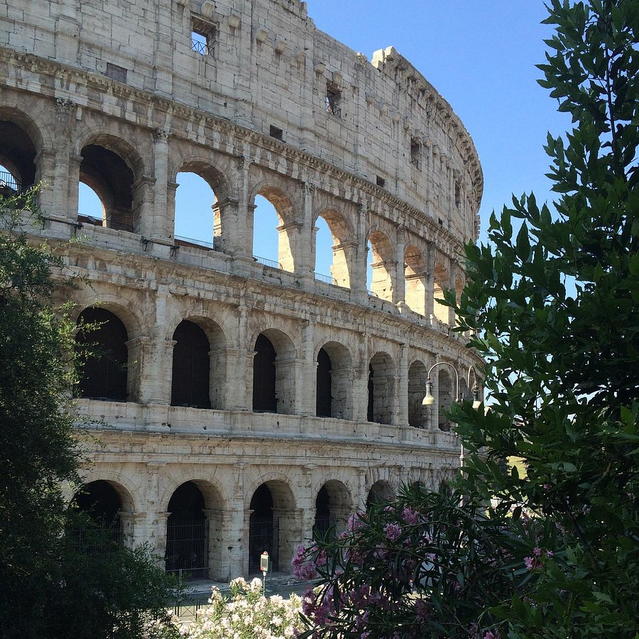 CASA ARIOLI Bewertungen, Fotos & Preisvergleich Rom, Italien ...