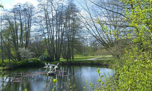 Die Girls im Teich