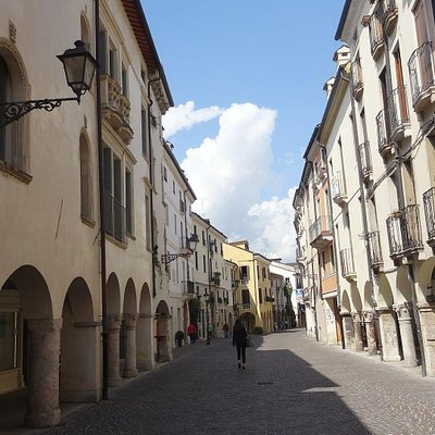 """A stretch of the """"Corso Fogazzaro"""", with arcades on both sides"""