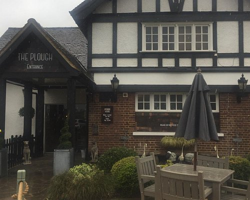 The Plough... if you want a great time out... book now