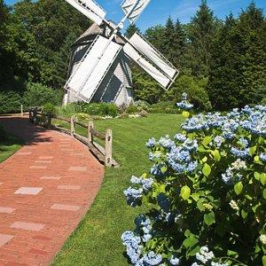 Old East Windmill (c1800)-Sandwich, Massachusetts