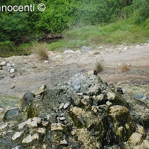 Sorgente ipotermale Bollori e Putizza: piccolo geyser 3