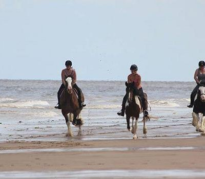 Amazing beach rides for experienced riders