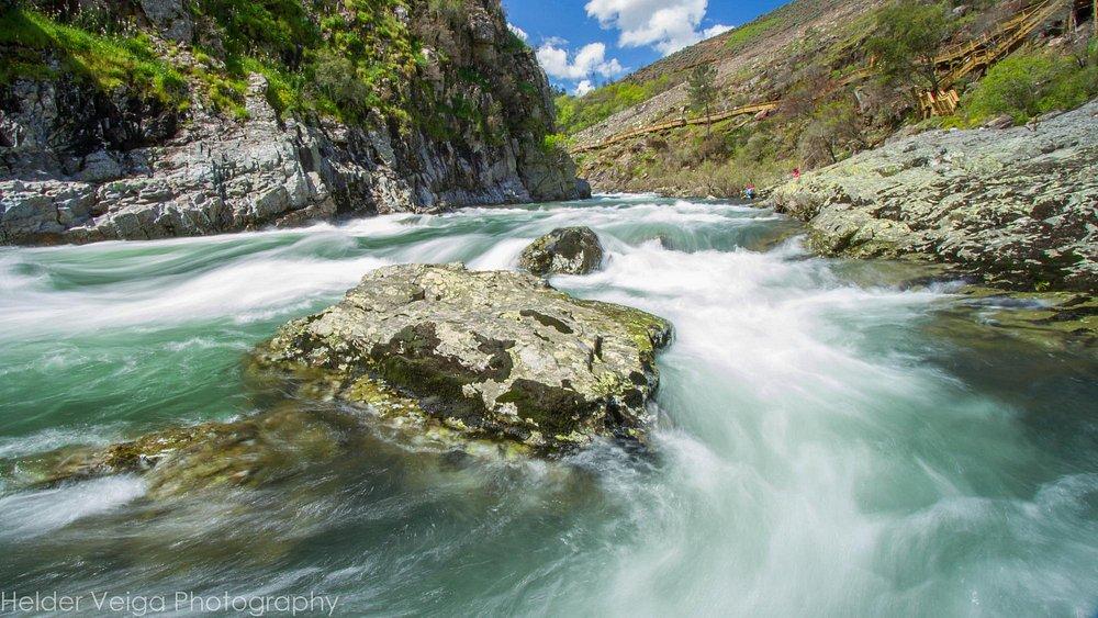 O rio selvagens