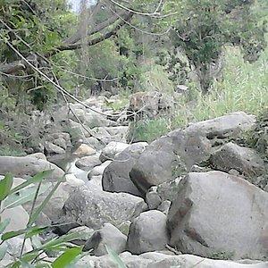 Agua aun limpia,  en peligro de contaminacion por las mismas personas que lo visitan y las empre