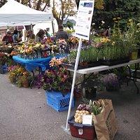 Hamilton's Farmers Market