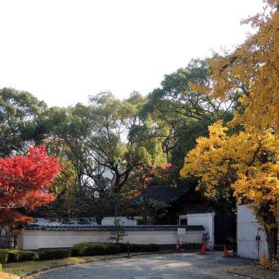 天王寺公園中の日本庭園