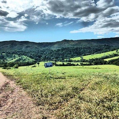 Road up to the Serra Dourado