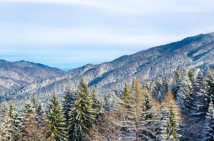 Carpathian mounts