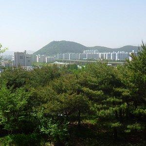 展望台から見る市内