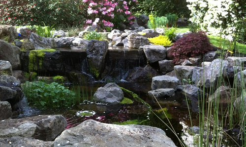 Dart's Hill pond and waterfall. Beautiful and serene.