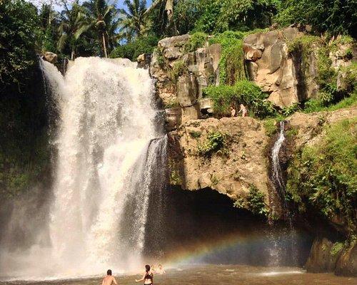Ubud waterfall / dewamadesang9@gmail.com