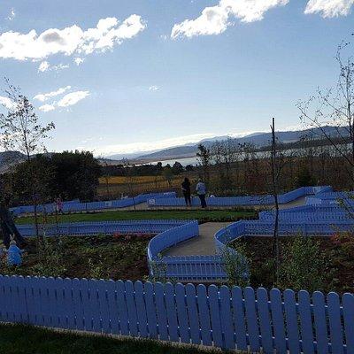 The Peter Rabbit Garden
