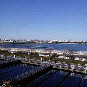 遠くに見えるのが羽田空港