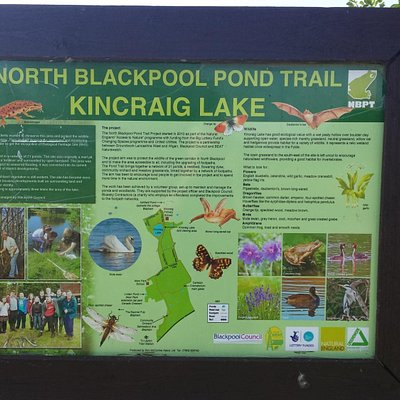 Kincraig Lake Information board