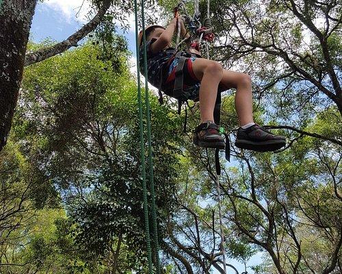 Tree climbing with Nick is kids' stuff!