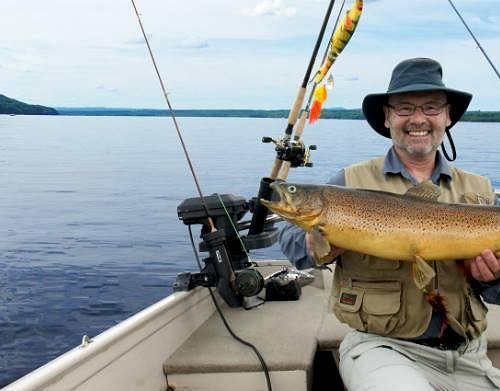 Prize brown trout