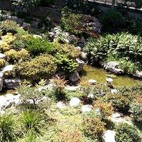 A nice small garden.