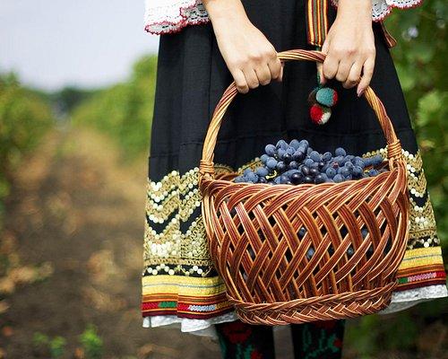Winetours_Moldova_grape_harvesting_vineyard
