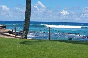 Grassy area near beach
