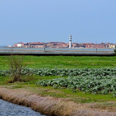 View of Murano from Artichoke Field on Sant'Erasmo