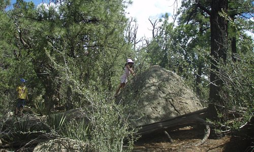 Up on the top of the trail. Large rocks and pine trees. Not many hikers, usually.