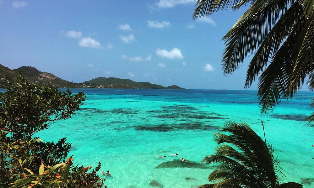 El lugar es hermoso, 100% recomendable ,  ls excursiones salen de la bahia de agua dulce ! Y al