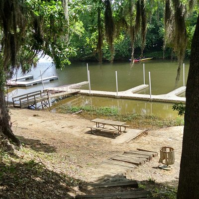 The docks at Cooter's Pond