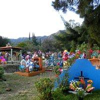Vie of the children's graves