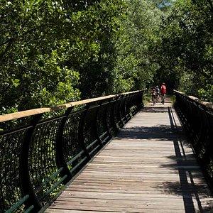 Puente sobre Vía Verde