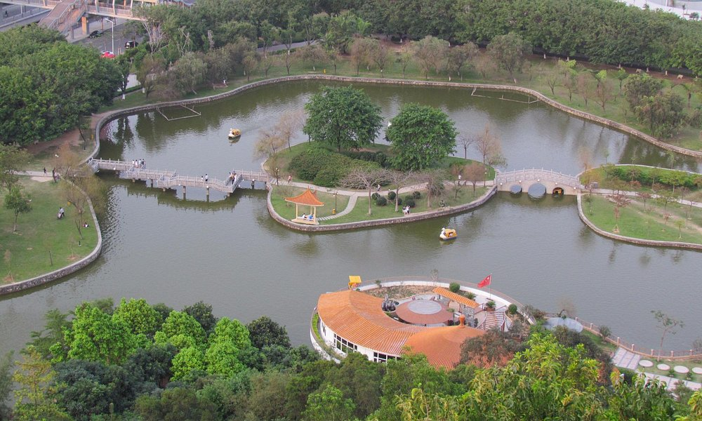 Lake and boating in park
