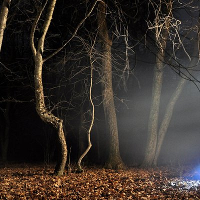 Dare! At night...