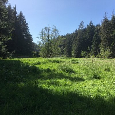 Various photos of the views that can be seen along the trails on the south slough