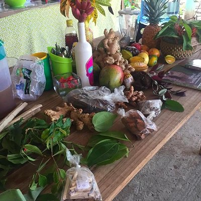 All set up for Herbal Medicine Making Class at Centro Ashé