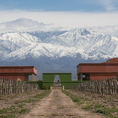 Nuesta Finca Biodinámica, al pie de la Cordillera de Los Andes.