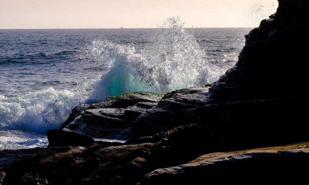 Narrabeen cliff