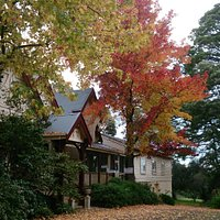 Dromkeen Autumn colours
