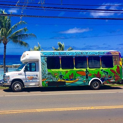 New and original Surf Bus Design
