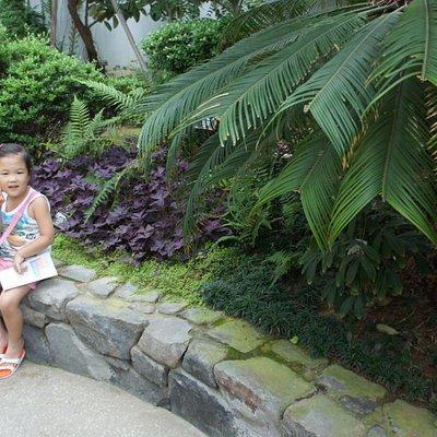 식물원에서
