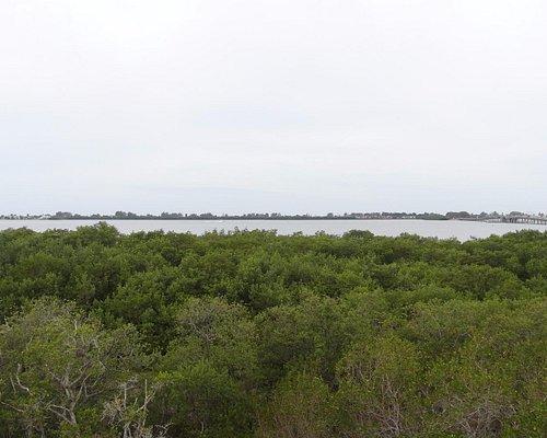 Short panorama view towards Anna Maria island