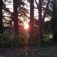 l'hiver dernier juste avant que le soleil s'en aille !