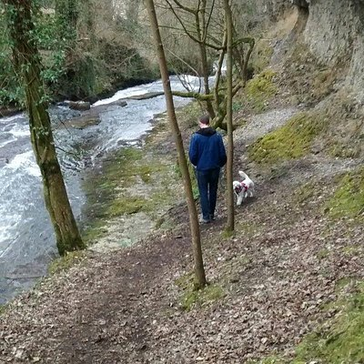 Peak Hidden Trails