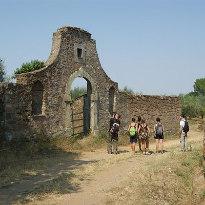 Viaggi nella tradizione, dentro la storia e fuori dal tempo