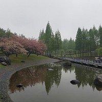 Hermoso parque para hacer ejercicio por las mañanas