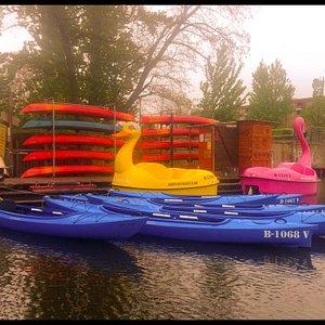Kayaks, pedalboats...